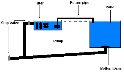 Bottom drain or gravity fed filter and pump pond for Gravity fed pond filter system